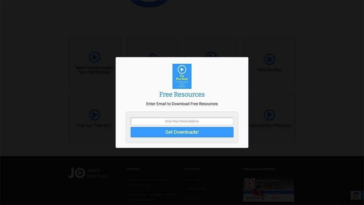 SmoothWebLife Project Janet Omstead Lockdown Email Capture